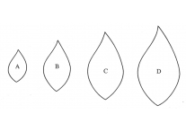 leaf set of 4 - 362