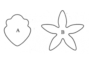 cymbidium orchid set of 2 - 475