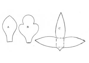 Dendrobium Orchid - 4864