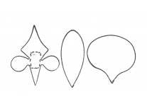 moth orchid set of 3 - 4867