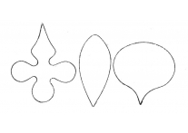 Moth Orchid - 4868